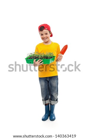 Young boy with tomato seedlings in a tray ready for gardening - isolated