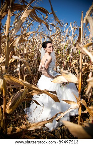 Young bride standing in the corn field - stock photo