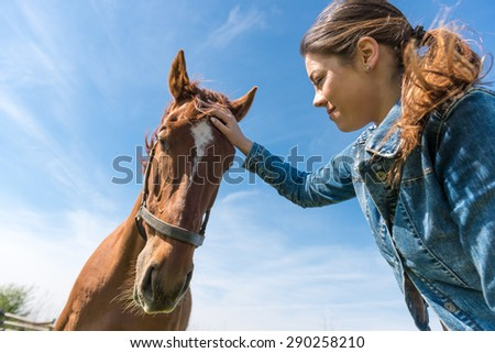 Young brunette woman taking care of her  brown horse. Low angle shot, selective focus - stock photo