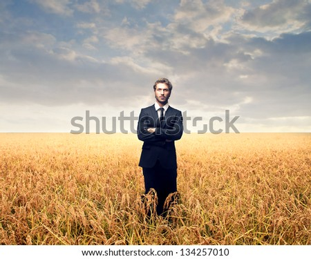 young businessman in a wheat field