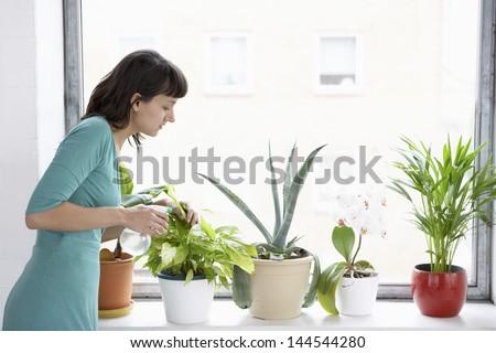 Young businesswoman sprays plants in flowerpots by window - stock photo