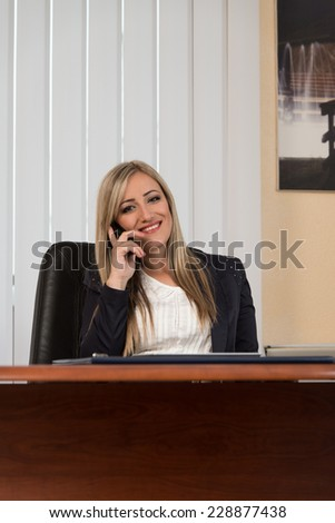 Young Businesswoman Working At Her Computer While Talking On The Phone - stock photo