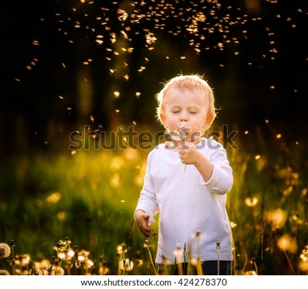 Young caucasian boy playing on dandelion meadow. Happy small child blowing dandelion seeds - stock photo