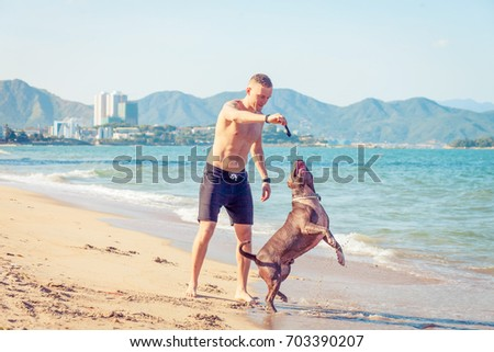 Young caucasian man playing with dog american pit bull terrier on beach.