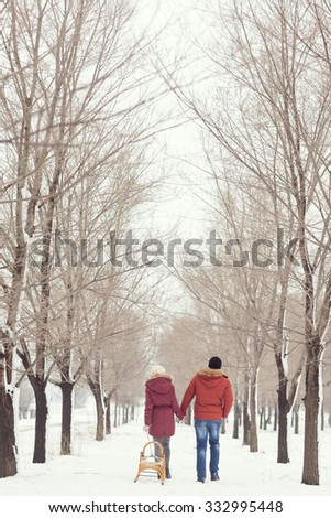 Young couple in love on a winter holiday walking away of the camera, puling sleigh and holding hands - stock photo