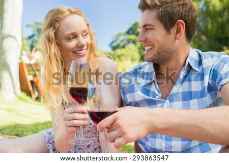 Young couple on a picnic drinking wine on a sunny day