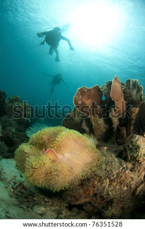 Young couple scuba dive together on a coral reef