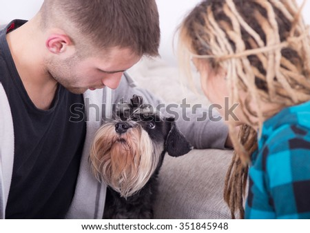 Young couple sitting on sofa with Miniature schnauzer