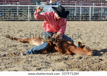 Young cowboy tying up a calf's legs during a rodeo. - stock photo