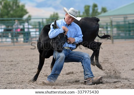 Young Cowboy wrestling a steer during a rodeo - stock photo