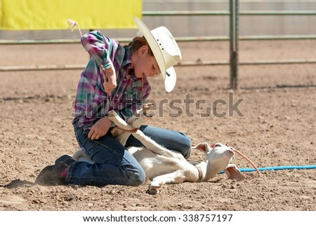 Young cowgirl riding a horse around a barrel in a rodeo.