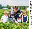 Young dad and two little kid boys, his sons having fun on strawberry farm in summer. Happy Family of three eating healthy organic food, fresh berries. Children and father. - stock photo