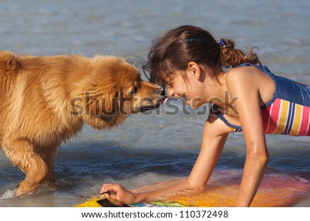 young dog and a beautiful girl fondle together in the water - stock photo