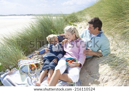 Young family having picnic at beach - stock photo