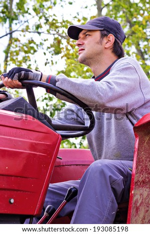 Young farmer driving his tractor through a plum trees orchard - stock photo
