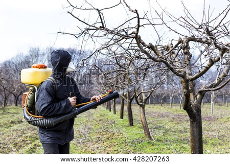 Young farmer spraying the trees with chemicals in the orchard