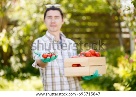 Young farmer with tomato box
