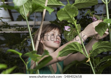 Young female botanist working in greenhouse - stock photo