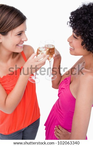 Young females standing face to face while clinking their glasses - stock photo