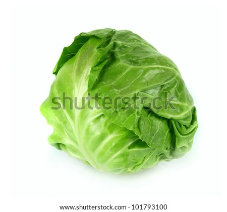 Young fresh green cabbage on a white background - stock photo