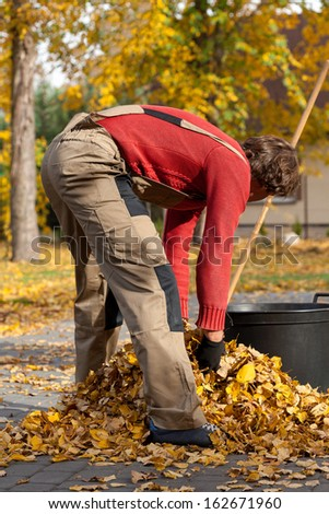 Young garden worker filling the bucket with autumn leaves - stock photo