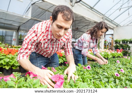 Young Gardeners Working at Nursery - stock photo