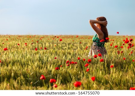 young  girl  at the poppies field  - stock photo