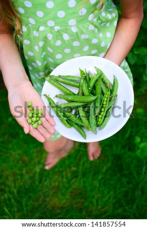 Young girl hand holding organic green natural healthy food produce green Peas - stock photo