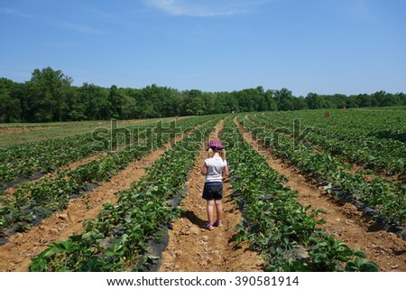 young girl in farm