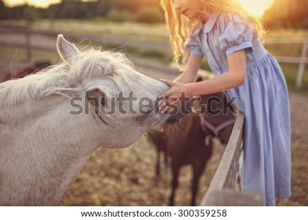 Young girl petting a horse - stock photo