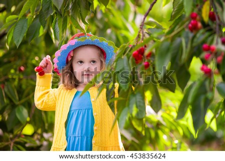 Young girl picking cherries in summer orchard.  - stock photo