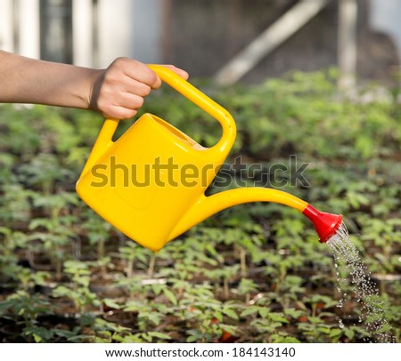 Young girl's hand watering plants in greenhouse - stock photo