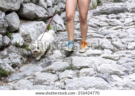 Young girl with a dog walking on the mountain trail - stock photo