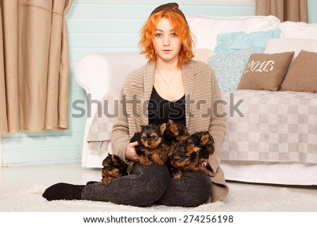 Young girl with a puppy of Yorkshire terrier. Beautiful reddish haired young woman holding a group of small terrier puppy York. Woman and puppy dog house in the room. Many puppies a woman in his arms. - stock photo