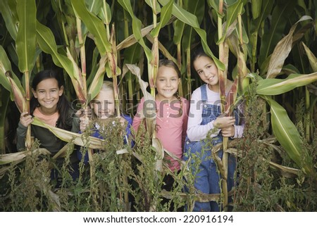 Young girls in cornfield - stock photo