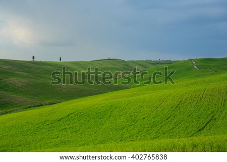 Young grass on the hills - stock photo