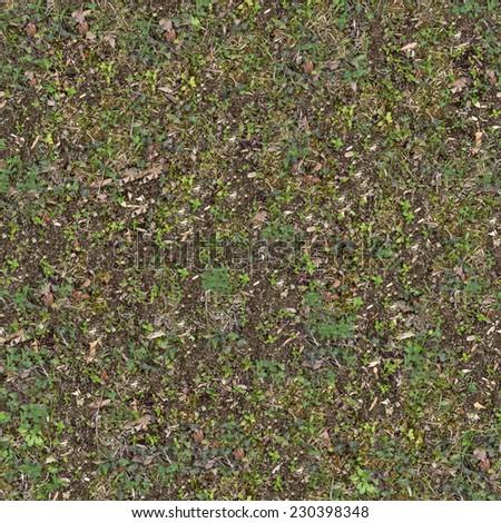 Plant Soil Texture