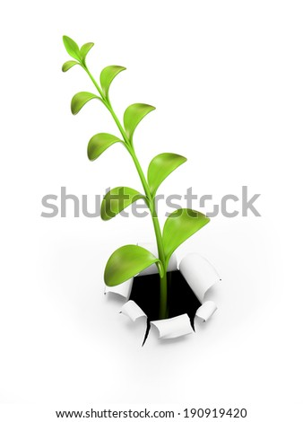 Young green sprout 3D - stock photo