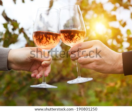 Young happy couple enjoying a glasses of pink wine in a vineyard - stock photo