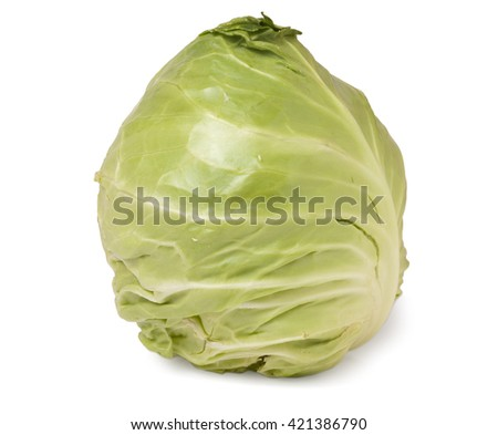 young head of cabbage isolated on white background - stock photo