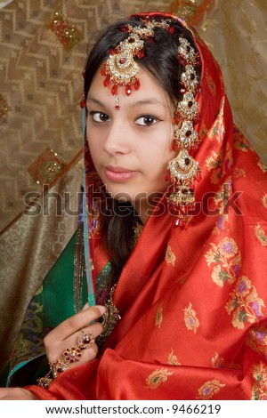 Young Indian girl wearing the traditional saree - stock photo