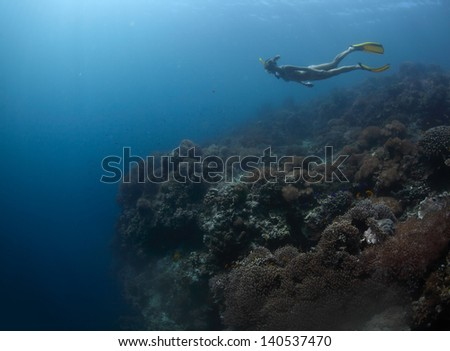 Young lady freediver finning over coral reef towards underwater abyss - stock photo