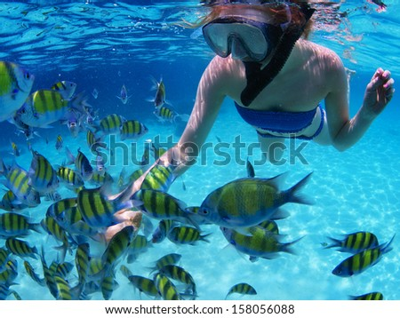 Young lady snorkeling and feeding fish in a tropical sea
