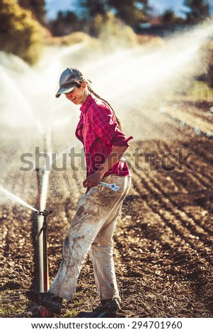 Young, lean female farmer adjusting irragation sprinklers on a field of onions on an organic farm. - stock photo