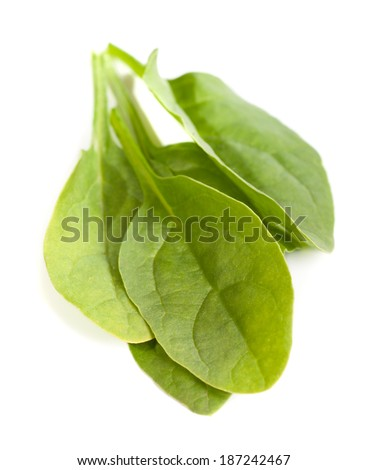 Young leaves of spinach isolated on white background
