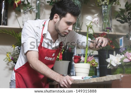 Young male florist working at counter in flower shop - stock photo