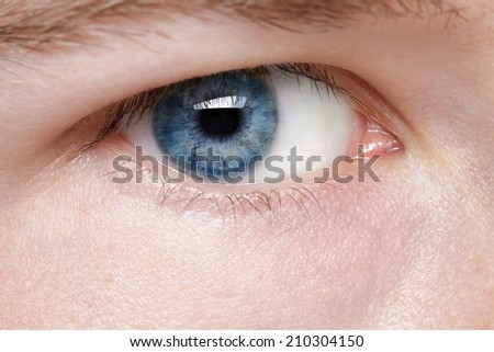 young man blue eye, close up photo - stock photo