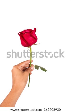 young man hold rose flower behind for surprise his wife
