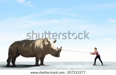 Young man in casual holding rhino on lead