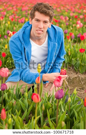 Young man in Dutch flower fields with tulips - stock photo